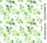 herbs and leaves watercolor...   Shutterstock . vector #1316538674