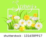 spring daisies  chamomiles... | Shutterstock .eps vector #1316589917