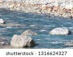 mountain river stream of water...   Shutterstock . vector #1316624327