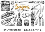 cane sugar with leaves. set of... | Shutterstock .eps vector #1316657441