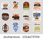 camping logo and labels.... | Shutterstock .eps vector #1316673704