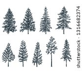 pine and spruce trees. vector... | Shutterstock .eps vector #1316682374