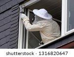 pest controller removing a... | Shutterstock . vector #1316820647