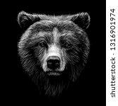 monochrome portrait of a brown...   Shutterstock .eps vector #1316901974