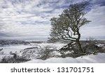 Goathland  Yorkshire  Uk. The...