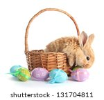 Fluffy Foxy Rabbit In Basket...
