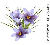 blue crocus flowers  crocus...   Shutterstock .eps vector #1317195341