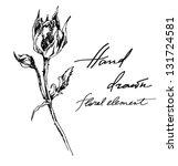 hand drawn ink illustration of... | Shutterstock .eps vector #131724581