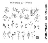 set of branches flowers. hand...   Shutterstock . vector #1317287801