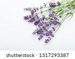 lavender on white background  ... | Shutterstock . vector #1317293387