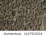 textured background  wall  old  ... | Shutterstock . vector #1317313214