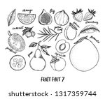 hand drawn vector illustration  ... | Shutterstock .eps vector #1317359744