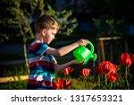 little child walking near... | Shutterstock . vector #1317653321