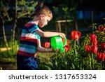 little child walking near... | Shutterstock . vector #1317653324