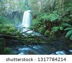 victoria waterfall  long... | Shutterstock . vector #1317784214