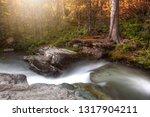 best weather click | Shutterstock . vector #1317904211