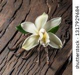 dried vanilla sticks and... | Shutterstock . vector #1317929684
