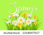 spring daisies  chamomiles...   Shutterstock .eps vector #1318047017