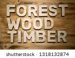 forest  wood  timber words made ... | Shutterstock . vector #1318132874