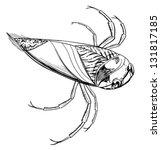 sketch of a water beetle | Shutterstock .eps vector #131817185