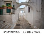 a street view of the old town   ... | Shutterstock . vector #1318197521