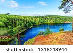 forest river panorama. green...   Shutterstock . vector #1318218944