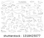 tundra biome. simple line style.... | Shutterstock .eps vector #1318425077
