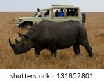 Rhino And Tourist Truck Kenya