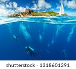 under and above water surface... | Shutterstock . vector #1318601291