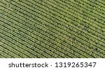 aerial photo from drones of...   Shutterstock . vector #1319265347