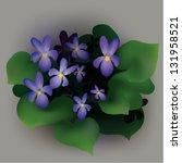viola   spring flowers | Shutterstock .eps vector #131958521