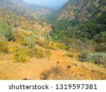 foothills towards the apoquindo ...   Shutterstock . vector #1319597381