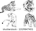 vector drawings sketches... | Shutterstock .eps vector #1319847401