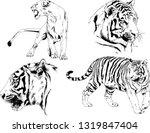 vector drawings sketches... | Shutterstock .eps vector #1319847404