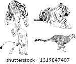 vector drawings sketches... | Shutterstock .eps vector #1319847407