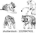 vector drawings sketches... | Shutterstock .eps vector #1319847431