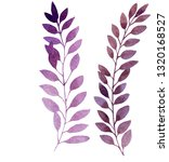 set of 2 watercolor isolated... | Shutterstock . vector #1320168527