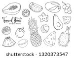 hand drawn tropical fruits set. ... | Shutterstock .eps vector #1320373547