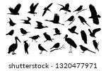 set of various bird vector... | Shutterstock .eps vector #1320477971