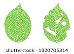 leaf worm eating illustration... | Shutterstock .eps vector #1320705314