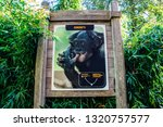 Billboard At The Apenheul Zoo...