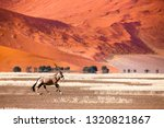 oryx antelope and orange dunes... | Shutterstock . vector #1320821867