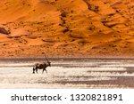 oryx antelope and orange dunes... | Shutterstock . vector #1320821891