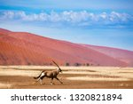 oryx antelope and orange dunes... | Shutterstock . vector #1320821894
