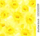 Daffodils Background