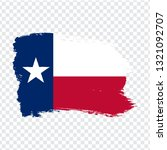 flag of texas from brush...