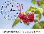 daylight saving time. dst. wall ... | Shutterstock . vector #1321175744
