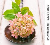 Pinkish - green  Autumn Hydrangea on rich brown wood   spoon against rustic board. selective focus, shallow dof - stock photo