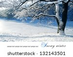 Snowy Winter Landscapes