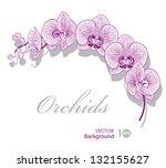 flower orchid. vector eps 10. | Shutterstock .eps vector #132155627